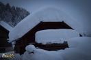 Schneedruck 09-15.01_13