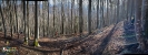 Waldbrand Molln_5