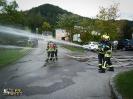 Branddienst Leistungsabzeichen_22